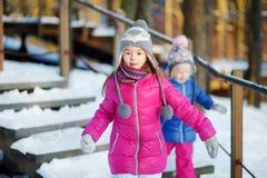 两个滑稽的可爱的妹获得乐趣一起在美丽的冬天公园 免版税库存照片