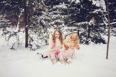 两个滑稽的姐妹在森林里 库存照片