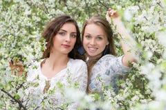 两个年轻美丽的夫人 库存图片