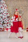 两个beautyful逗人喜爱的女孩微笑的姐妹朋友和xmas豪华绿色白色树圣诞节画象在独特的内部演播室 免版税图库摄影