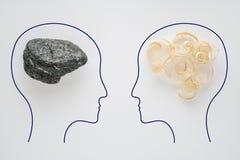 两人头有锯木屑脑子形状和石脑子形状的 有另外认为的两个人 合理和不合理 库存照片