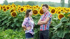 两位农夫震动一名成交、男人和妇女耕地球形的,谈话在向日葵的领域 股票视频