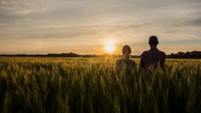 两位农夫,男人和妇女,盼望在一块麦田的日落 配合在农工联合企业中 免版税库存照片