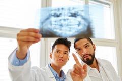 两位放射学家做X-射线图象诊断 库存照片
