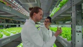 两位科学家、一个男人和一名妇女白色外套的在试管投入植物样品为了发现结果  影视素材
