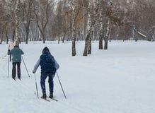 两位老人去滑雪在冬天公园 从后面的看法 免版税图库摄影