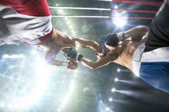两位professionl拳击手在竞技场战斗 免版税图库摄影