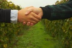 两供以人员握手 免版税库存图片