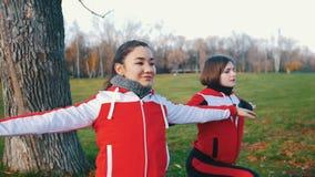 两做锻炼的年轻女人在公园 股票视频