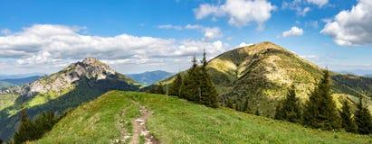 两典型的小山全景从一点Fatra小山的 免版税库存图片