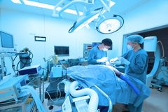 两兽医手术运转中室 免版税库存图片