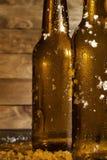 两冷淡的啤酒瓶新近地被采取在冰箱外面 库存照片