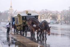 两匹马得出的支架在宫殿正方形 图库摄影