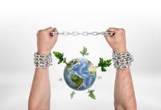 两只司链员手和地球与高树,所有隔绝在白色背景 免版税库存图片