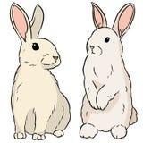 两只复活节兔子手拉的五颜六色的乱画 向量例证