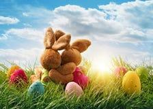 两只复活节兔子 库存图片