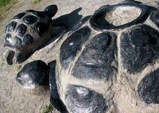 两只大黑乌龟停放在沙子的对象,看法的关闭从a 免版税库存图片