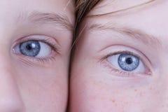 两只女孩眼睛,他们看照相机,画象孩子,宏指令,户内 免版税库存照片
