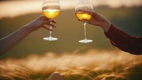 两只妇女的手使在黑麦的日落耳朵背景的玻璃叮当响  股票视频