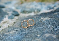 两只婚姻的金戒指 免版税库存照片