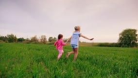 两只快乐的无忧无虑的孩子举行手 同时他们沿绿色草甸跑,获得乐趣 影视素材