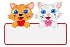 两只快活的小猫拿着一副干净的横幅 免版税库存照片