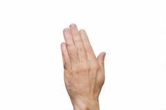 两只手在上面被举 免版税图库摄影
