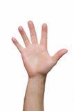 两只手在上面被举 图库摄影