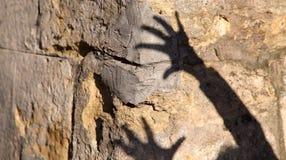 两只手的奇怪的阴影在一个老石墙上的 黑阴影,女性手 图库摄影