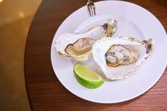 两只新鲜的牡蛎盛肉盘 免版税库存照片