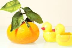两只有趣的鸭子 免版税库存图片