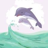 两只海豚 免版税图库摄影
