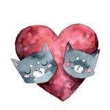 两只灰色猫亲吻和大桃红色心脏水彩 向量例证