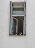 两只猫坐窗口 免版税库存照片