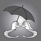 两只蠕虫和多雨天气eps10 库存图片