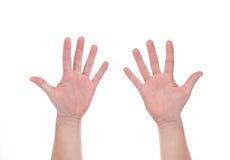 两只被打开的人的手 免版税库存照片