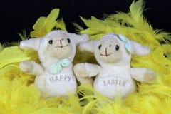 两只装饰愉快的复活节绵羊 免版税库存照片