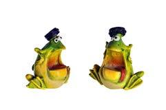 两只谈的青蛙 库存照片