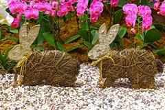 两只逗人喜爱的小的复活节兔子 库存图片