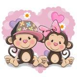两只逗人喜爱的猴子 库存图片