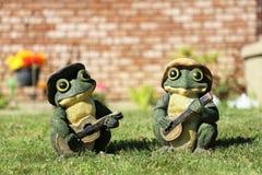 两只青蛙戏剧吉他 库存照片
