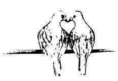 两只鸟亲吻 免版税图库摄影