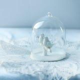 两只鸠,柔和的淡色,软的焦点数值的构成在玻璃圆顶的 图库摄影