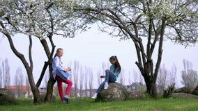 两可笑的少年女孩戏剧吉他唱歌曲户外 春天开花的树在乡下 娱乐leis的概念 股票录像