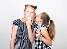两吃明亮的棒棒糖的逗人喜爱的矮小的女朋友 滑稽的孩子 最好的朋友纵容和摆在 他们中的一个耳语 库存照片