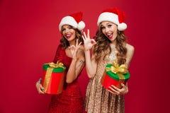 两名可爱的逗人喜爱的妇女画象圣诞节帽子的 库存照片