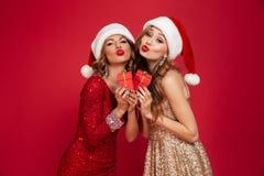 两名可爱的逗人喜爱的妇女画象圣诞节帽子的 免版税库存照片