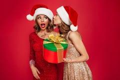 两名可爱的逗人喜爱的妇女画象圣诞节帽子的 免版税库存图片