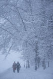 两名妇女在多雪的天走 库存照片