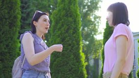 两名年轻聋哑妇女沟通使用在公园关闭的手语  股票录像